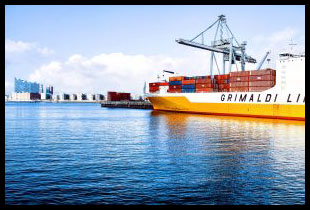 logisticsMSS Logistics